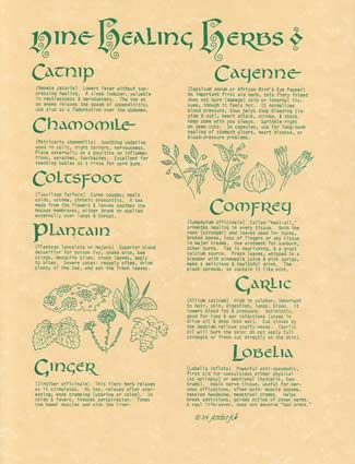 9 Herbs Poster