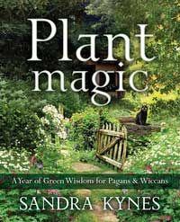 Plant Magic By Sandra Kynes