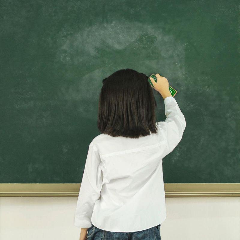 Chalk And Dry Erase Board Black Felt Eraser
