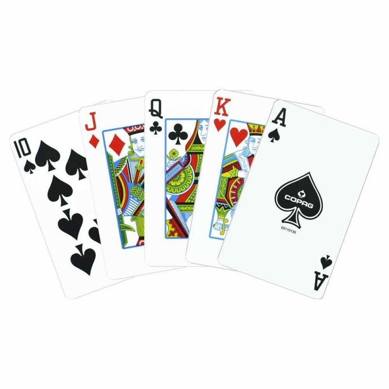 Copag Plastic Cards Leather Case Set Epoc Bridge Jumbo
