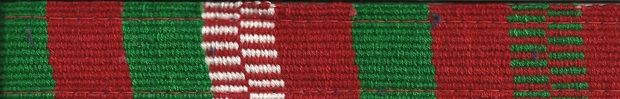 Color Pet™ Maya Custom Personalized Holiday Leash: Small