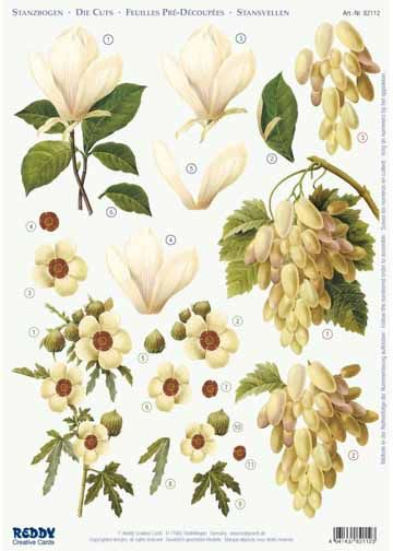 3d Precut, Magnolia, Grapes, Hibiscus