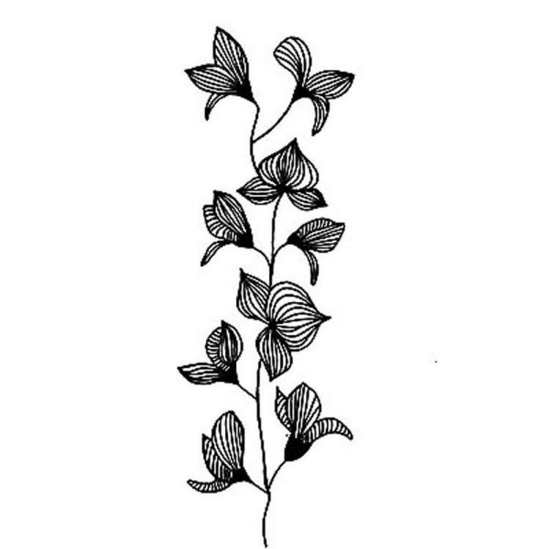 Lavinia Stamp - Orchid