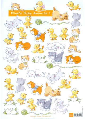 Baby Animals 1- Ducky's And Kittens