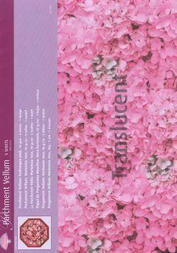 Vellum Hydrangea Pink (5 Sheets)