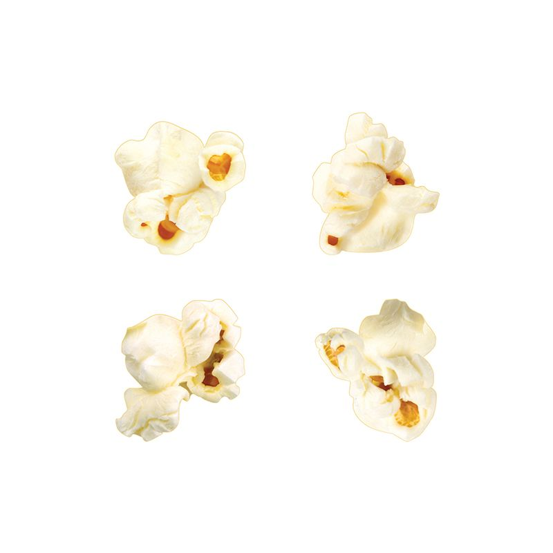 Classic Accents Popcorn Variety Pk Discovery