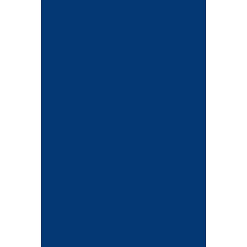 Bleeding Art Tissue National Blue 24 Sheets 20X30