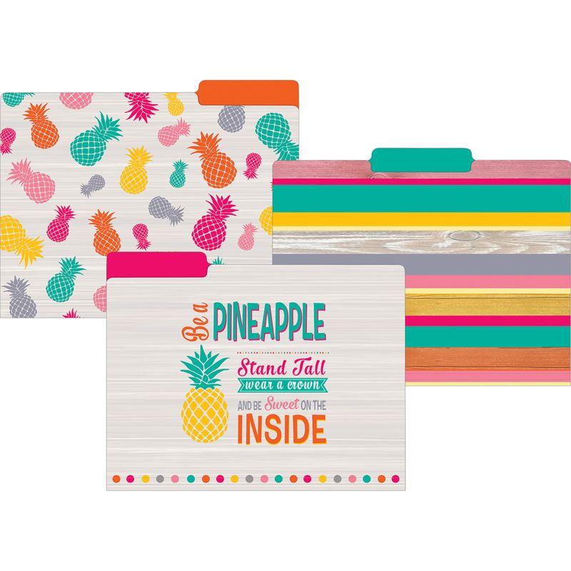 Tropical Punch File Folders