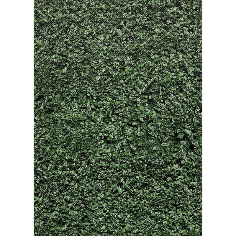 Boxwood Bulletin Board Roll 4/ct Better Than Paper