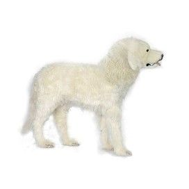"Pyrenese Mtn Dog 39""l"