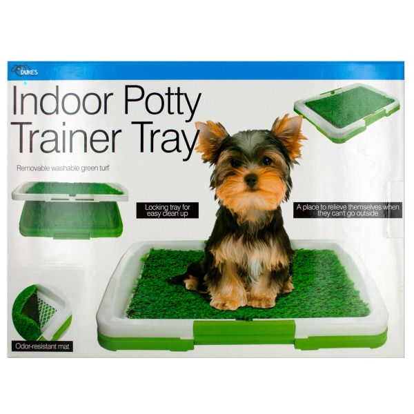 Indoor Potty Trainer Tray, Pack Of 2