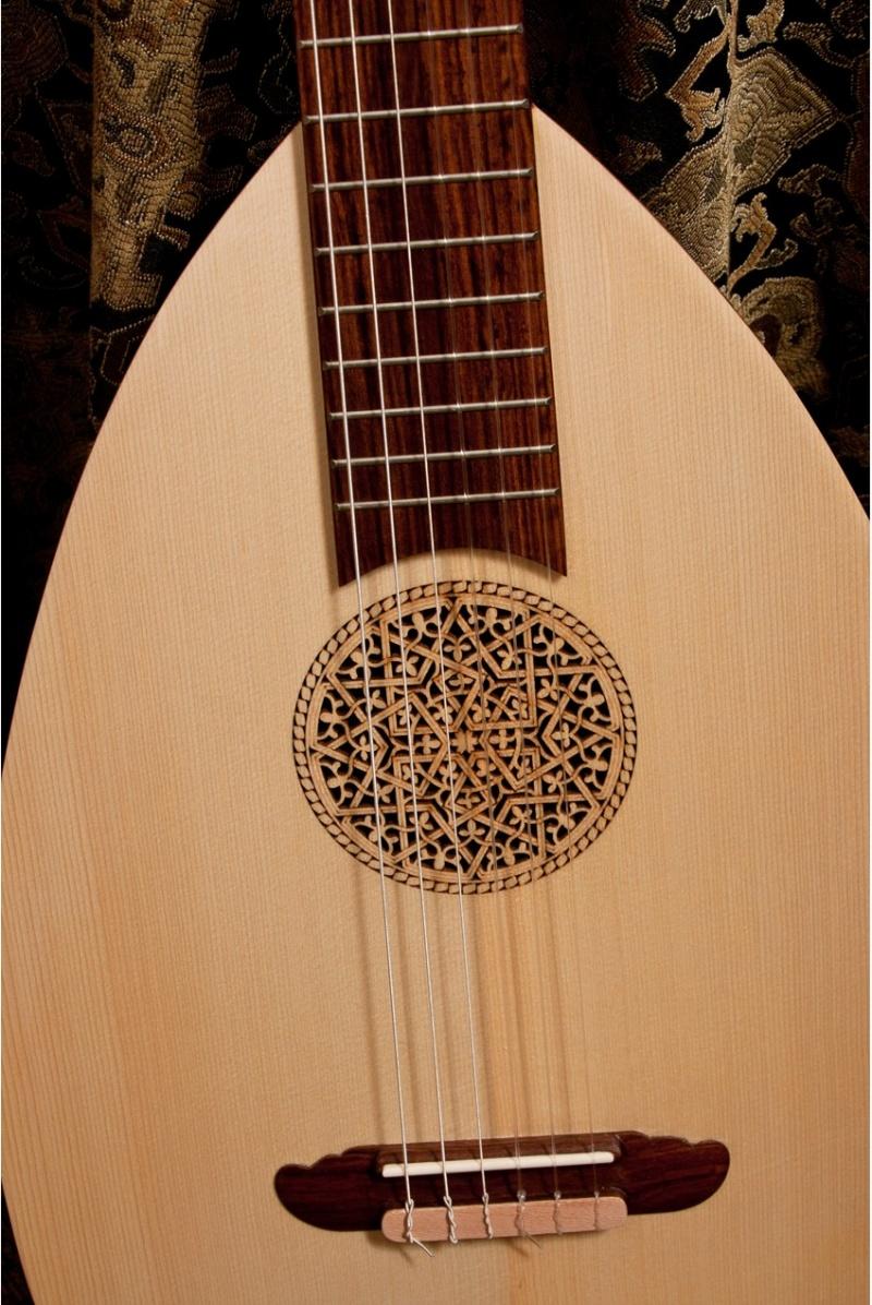 Roosebeck Lute-Guitar, 6 String, Variegated, Gears