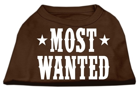 Most Wanted Screen Print Shirt Brown Med
