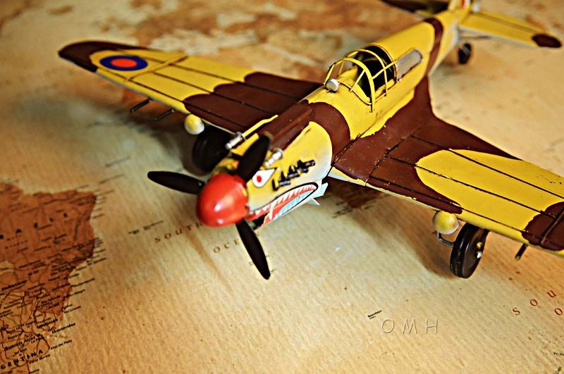1941 Curtiss Hawk 81A 1:29