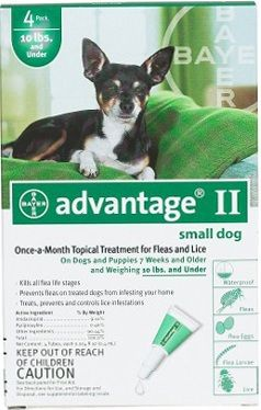 Flea Control For Dogs And Puppies Under 10 Lbs 4 Month Supply