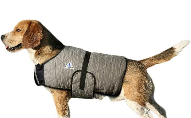 HyperKewl Evaporative Cooling Dog Coat: Silver, XXL