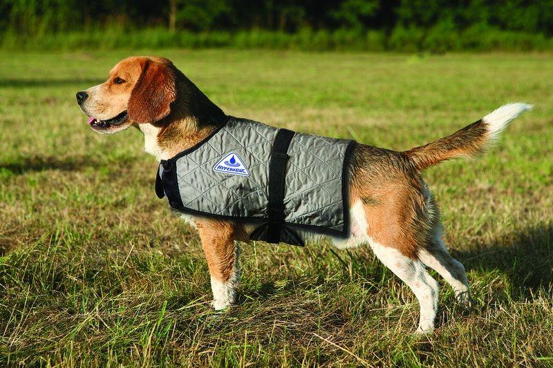 HyperKewl Evaporative Cooling Dog Coat: Silver, L